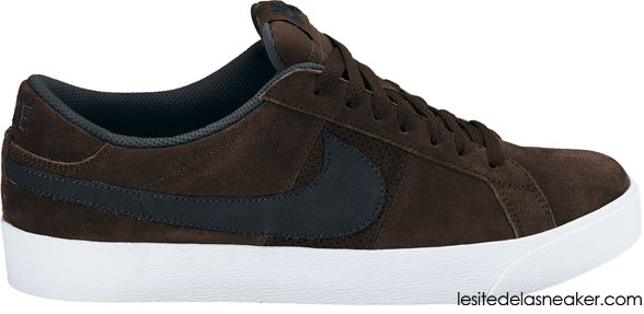 c5c7109f5b6 Nike SB Collection Footwear Février 2011 - Le Site de la Sneaker