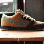 nike-sb-slam-dunk-from-slam-city-skates-01