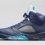 air-jordan-5-retro-pre-grape-hornets-1