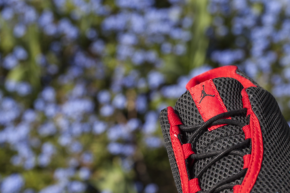 air jordan future low bred