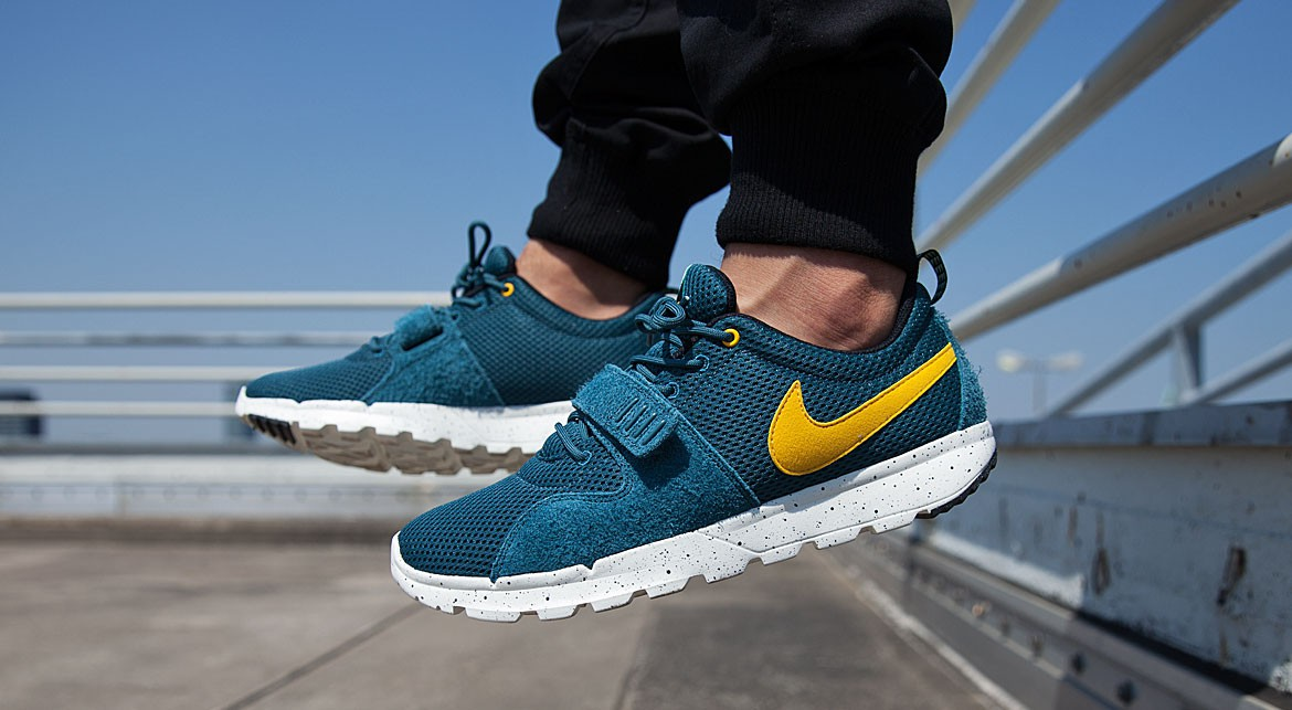 Nike SB Trainerendor Marron clair