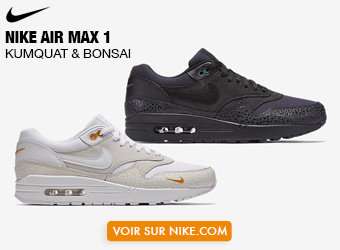 Nike Air Max 1 Mini Swoosh