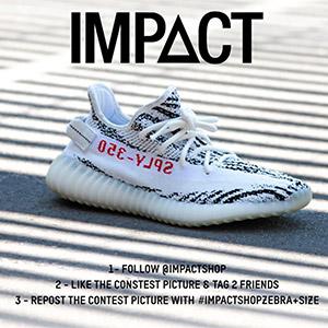 impactshop-yeezy-zebra