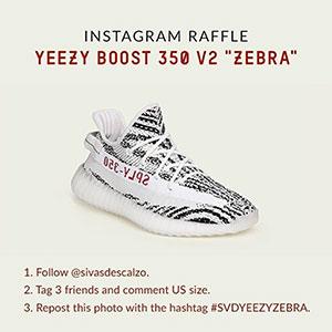 sivadescalzo-yeezy-zebra