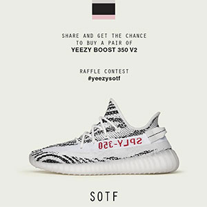 sotf-yeezy-zebra