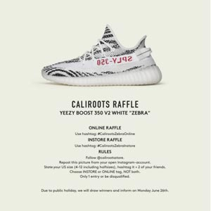 caliroots-yeezy-zebra