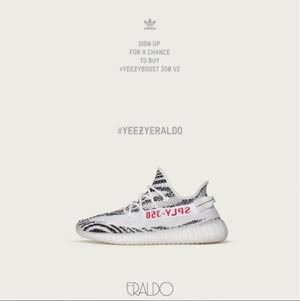 eraldo-yeezy-zebra