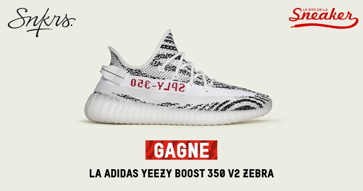 adidas yeezy boost 350 v2 zebra femme